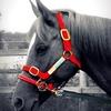 horse-lovely