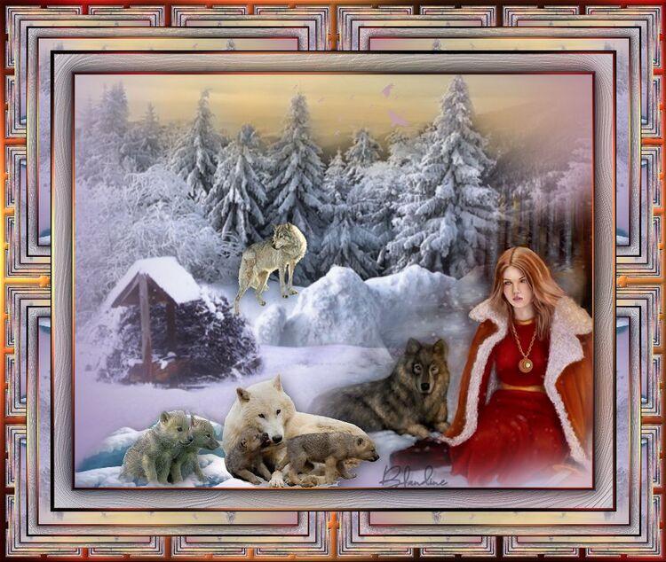 La reine des loups/Le jardin des hérissons