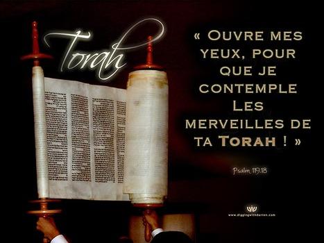 psaumes 119 torah rouleau mod