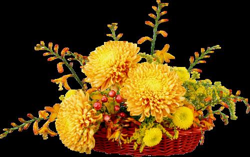Corbeilles de Fleurs