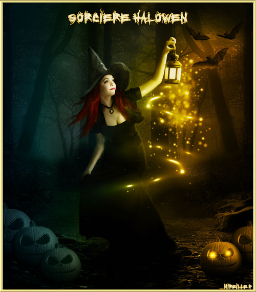 Montage Nuit Halloween avec Sorcière