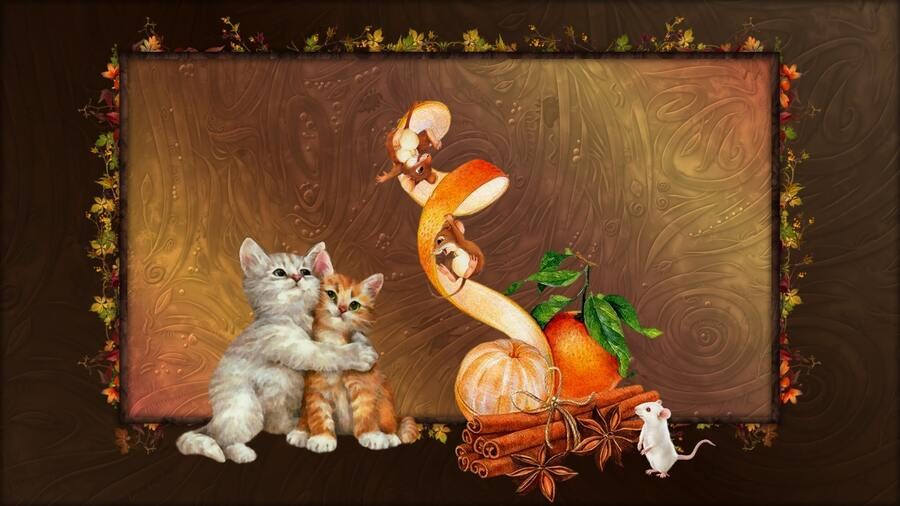 chats et souris