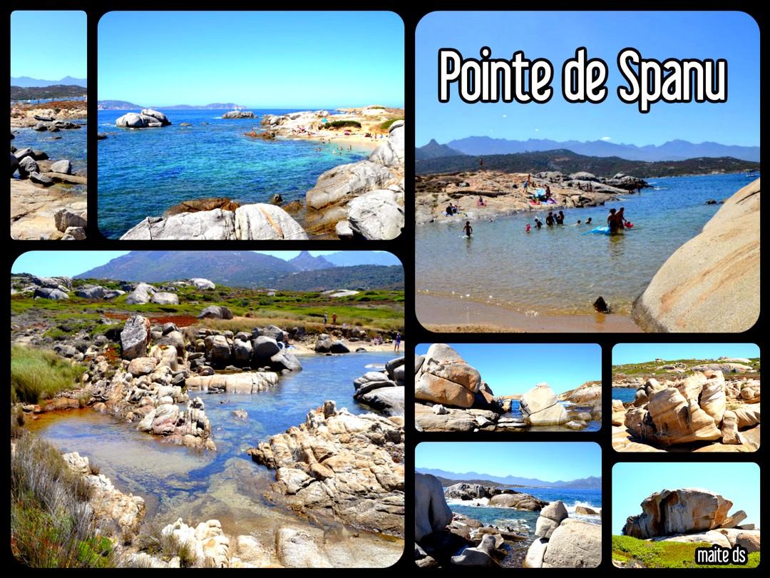 Pointe de Spanu - Corse - 31 juillet 2014