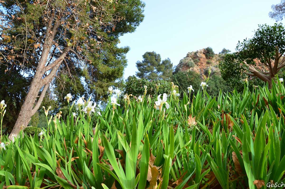 maroc béni mellal