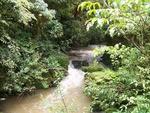 Raglan-Waitomo-Maketu)