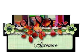 Décorations saisons