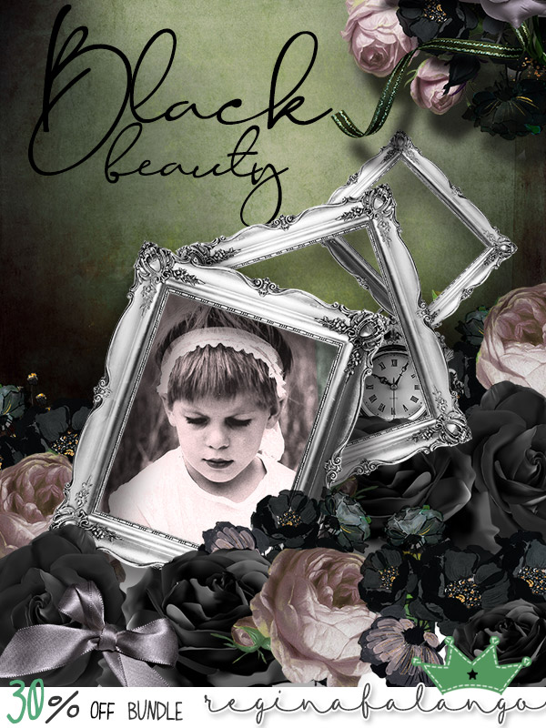 BLACK BEAUTY   Hapsno11