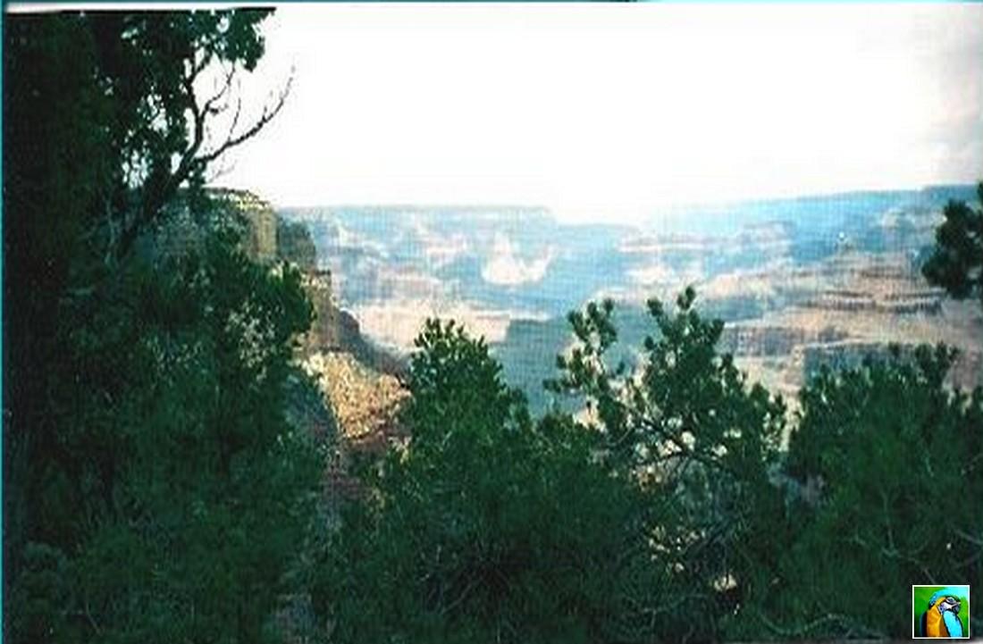 Ouest américain : Grand canyon