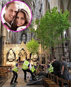 arbres mariage kate et william
