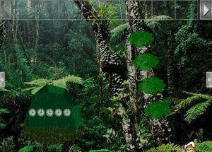 Jouer à Deep rainforest escape