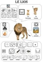 Carte identité des animaux