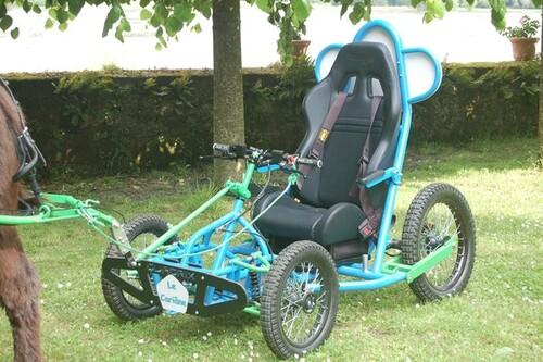 Handicap et cariâne