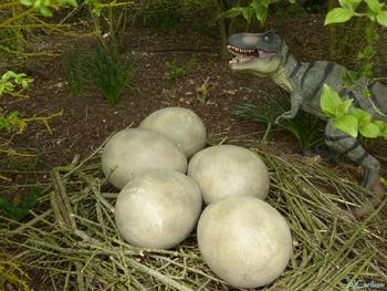 Didier Néraudeau tombe sur un nid de dinosaures