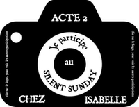 Silent Sunday #41