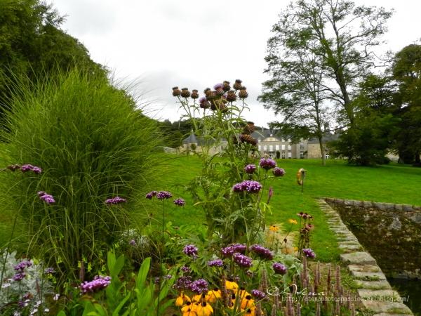 Chateau de Flamanville (GROS GROS chardons)