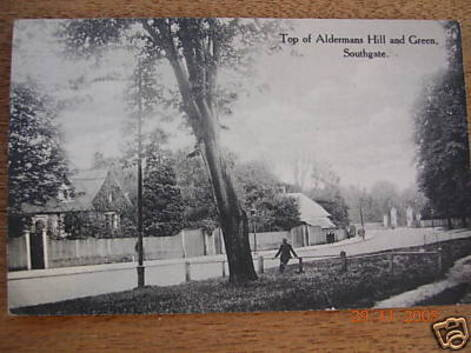 Aldermans Hill