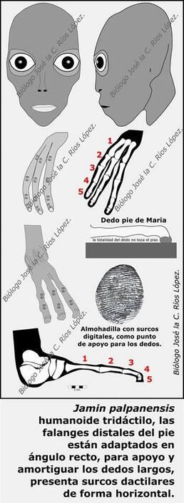 Alien Project : Maria,Josefina,Victoria
