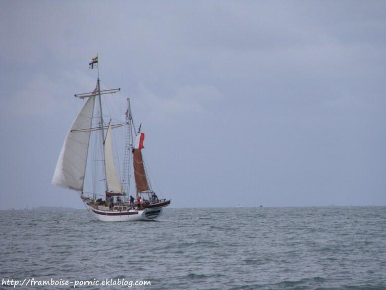 Sortie en mer avec le Corsaires de Retz à Pornic