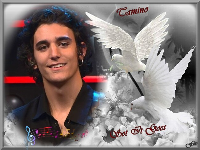 "Tamino "" Sot It Goes"""