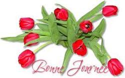 Cartonnettes et MP Tulipes d'Avril !