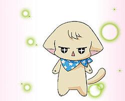Kiriya Ayami (Cirrus), Chichimaro