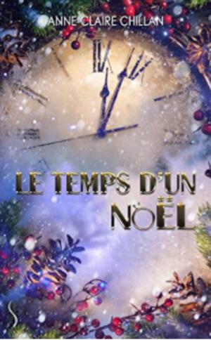 Chronique du roman {Le temps d'un Noël}
