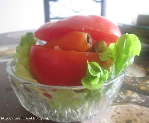 Tomate printanière