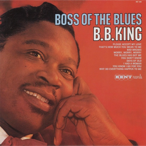B.B. King : The Blues Has Got Me