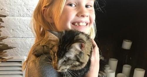 Une petite fille tombée sous le charme d'un chat aveugle
