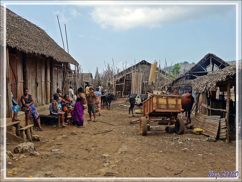 Après 43 h de voyage depuis notre départ dans les Pyrénées, nous voici à Hellville (Nosy Be, Madagascar) où nous marchons un peu en attendant le bateau qui nous conduira à Tsarabanjina (Mitsio)