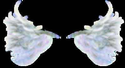 Tubes : Féeriques/ailes d'anges