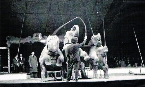 Jean Richard et son cirque-zoo en 1957 ( direction Gruss-Jeannet) - archives Thierry Baleine