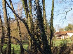 Promenade vers Francheville