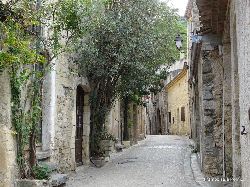 Saint Guilhem le Désert - Vallée de Gellone - Hérault 2017