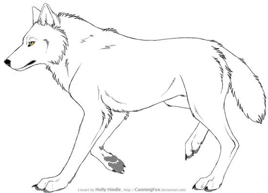 Les Loups De Lena Les Loups En Dessins Page 2 Loups Et Legendes