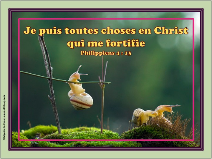 Je puis toutes choses en Christ qui me fortifie - Philippiens 4 : 13