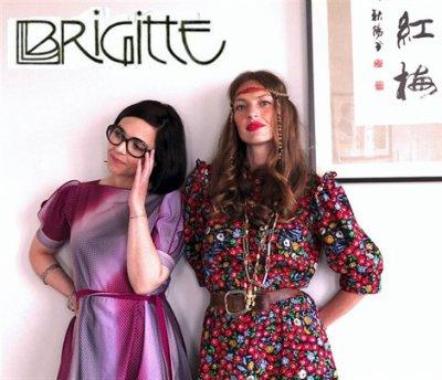 Elles s'appellent Brigitte! en cours d'écriture.....
