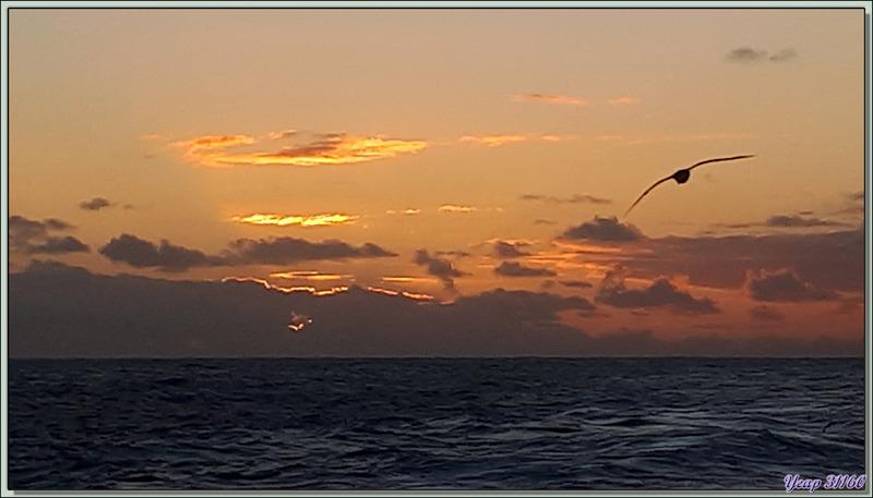 Le soleil se couche, Tristan est déjà loin, de nouvelles aventures africaines nous attendent...
