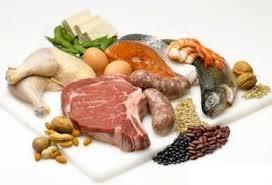 """Résultat de recherche d'images pour """"les protéines"""""""