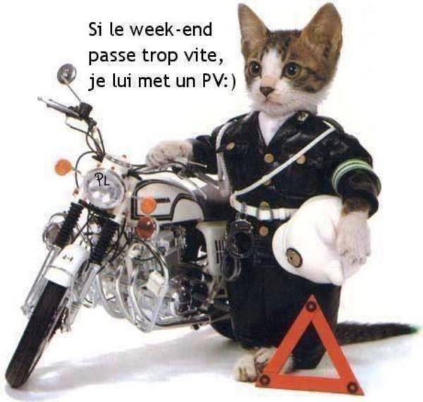 BON  WEEK  END   2