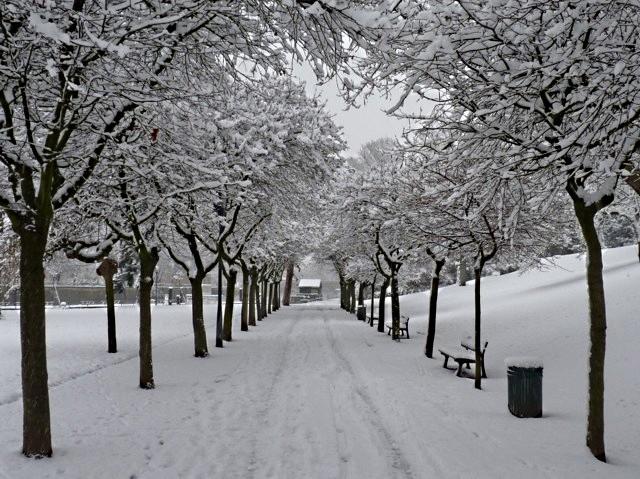 Marchés de Noël 2010 sous la neige 1 mp1357 - 17