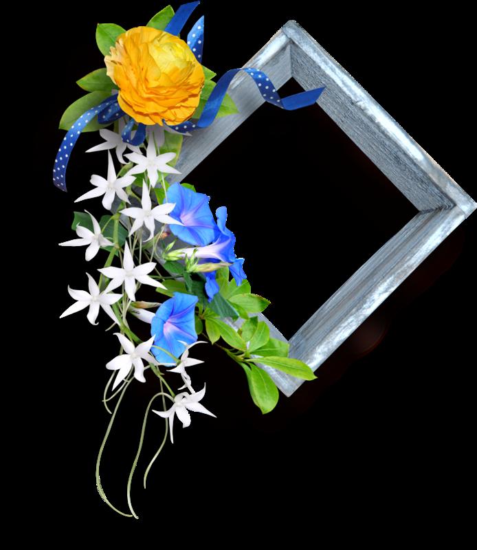 Tubes Encadrement avec Fleurs