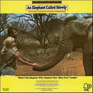 Elephant Rides Again