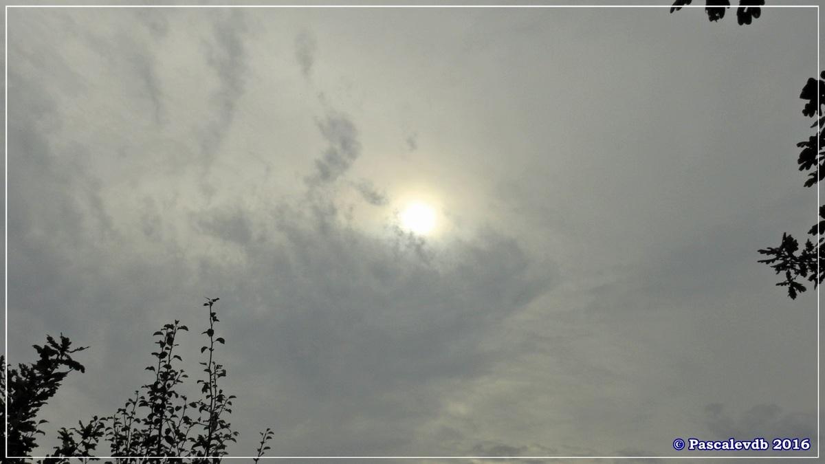 Plaines du Teich et domaine de Fleury - Octobre 2016 - 9/13