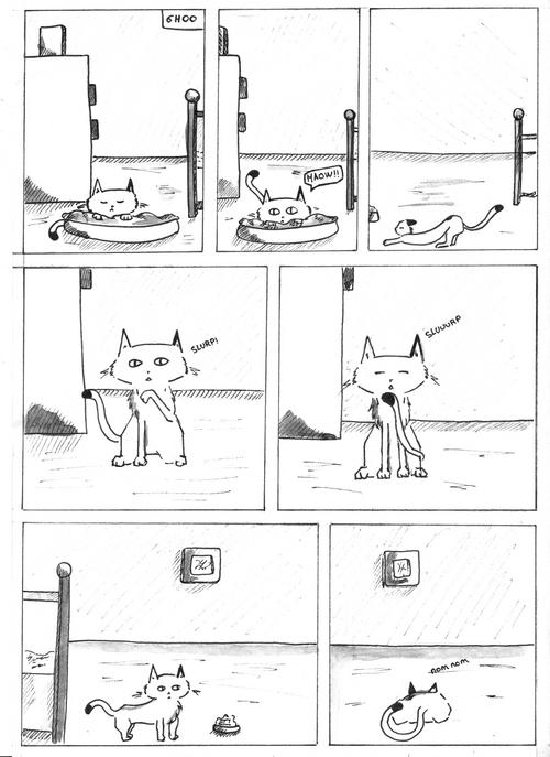24h de la BD 2013 / 24h d'un chat...