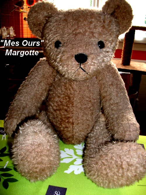 MES OURS !
