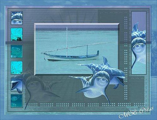 Le-monde-des-dauphins.jpg