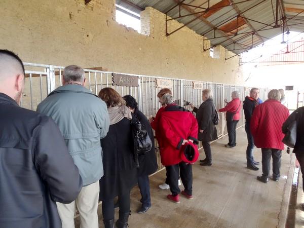 """L'Association"""" Esprit des loups Polaire"""" a reçu les peintres des Amis du Châtillonnais"""