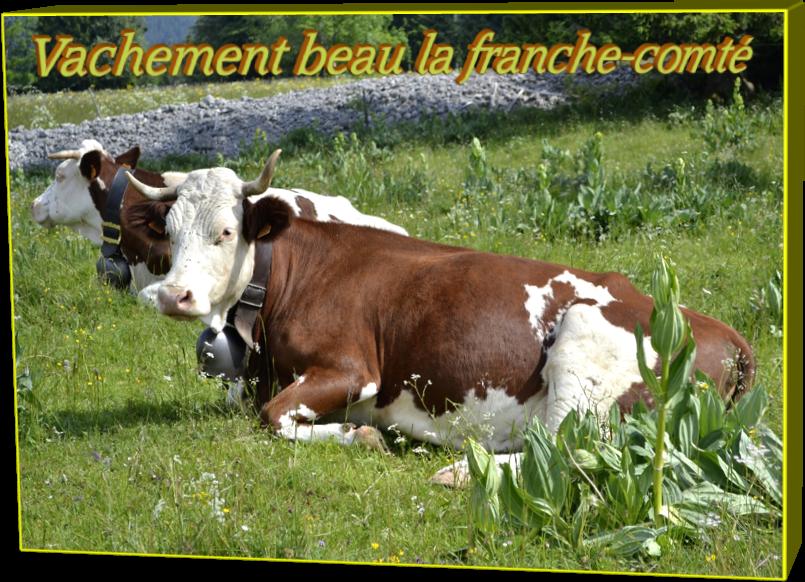 Vachement beau la franche-comté