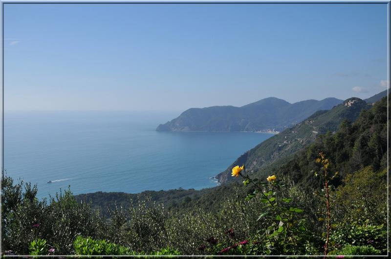 Italie, les 5 Terres : sur le sentier N°6 au-dessus de Corniglia, vue vers Monterosso